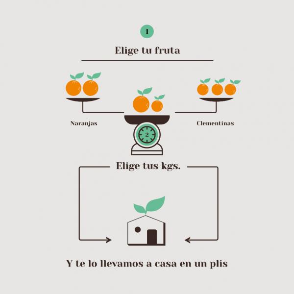 Elige tu fruta fresca 100% natural y te lo llevamos a casa en un plis
