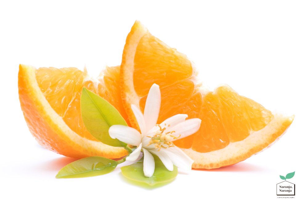 Descubre el origen de la Naranja